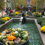 Herbst am Rockefeller Center